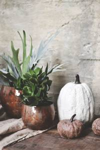 Bilde av Hvit - Keramikk Stort
